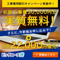 ビッグローブ光インターネット回線開通(株式会社ポケットモバイル)