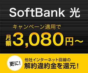 SoftBank光(株式会社ポケットモバイル)