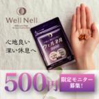 ウェルネル9900 (500円モニター)